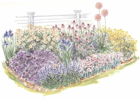 Солнечный сад для начинающих